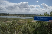 Hans Geerarts - Natuurgebied Zuid Kennemerland 1